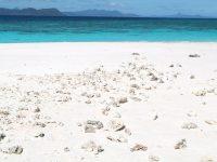 جزر القمر: عروس وعطور وأزهار برية